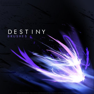 Pim L.C.'s Blog - Destiny